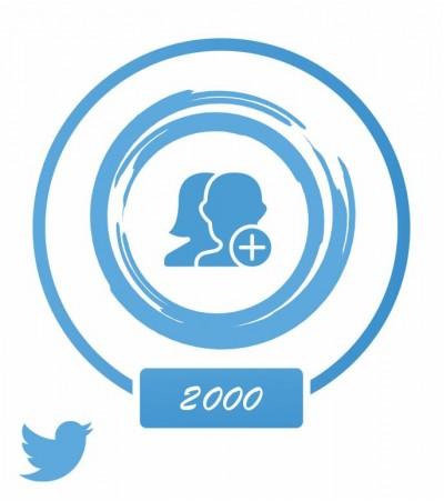 Аккаунт (Twitter) +2 тыс. фолловеров