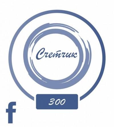 +300 на счетчик в Facebook