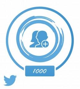 Аккаунт (Twitter) +1 тыс. фолловеров
