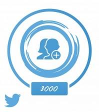Аккаунт (Twitter) +3 тыс. фолловеров