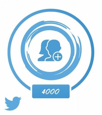 Аккаунт (Twitter) +4 тыс. фолловеров
