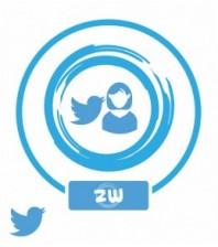Аккаунты (Twitter) от 2014-15 года 100-300 фолловеров
