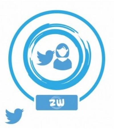Аккаунты (Twitter) от 2014 года (женские)
